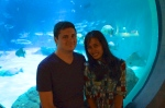Not an engagement photo, but still nice.  At the aquarium